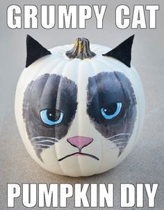 A no-carve, painted Grumpy Cat pumpkin?! What a genius Halloween DIY project.