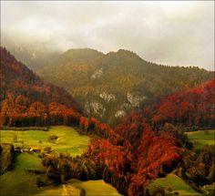 Autumn, The Alps, Switzerland  photo via fellipy