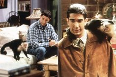 Image result for ross from friends now