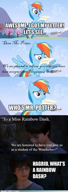 Dash from Mlp fim meets Harry Potter. I was laughing so hard.Rainbow Dash from Mlp fim meets Harry Potter. I was laughing so hard. Images Harry Potter, Harry Potter Puns, Memes Humor, Funny Jokes, Hilarious, Mlp Memes, Hogwarts, Crossover, Funny Pictures