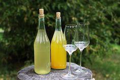 Вино из одуванчиков, собранных весной и летом