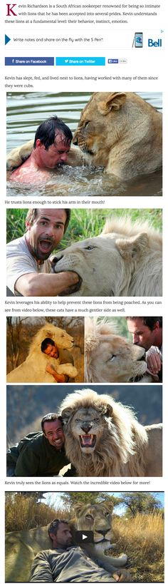 153 Best Animals Images On Pinterest In 2018 Funny Animals