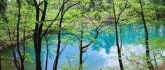 Lacul Albastru  1000 Locuri de vizitat in Romania. Unic prin principala sa caracteristica, lacul este deosebit datorita urmatorului aspect: in nici o alta tara din lume nu mai exista un lac care sa isi schimbe culoarea in functie de lumina care bate in el sau oamenii care inoata aici. Despre Lacul Albastru La o distanta de aproximativ 3 km de Baia Sprie se afla Lacul Albastru.