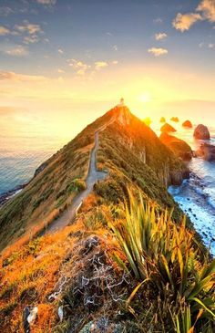 Nugget Point Lighthouse,New Zealand. Writing prompt idea for kiwi kids. ♥ Lucy, Beyond Imagination New Zealand The Places Youll Go, Places To See, Beautiful World, Beautiful Places, Photos Voyages, New Zealand Travel, Adventure Is Out There, Auckland, Dream Vacations