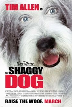 Why you should watch it? : Shaggy Dog  (2006)