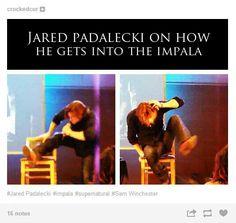 Haha oh Jared