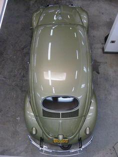 VW Beetle Oval Window. ♥ Loved and pinned by www.enterpriseglass.ca