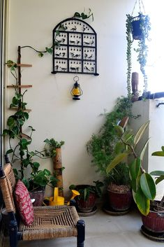 Flowers n Cushions: My Balcony Garden