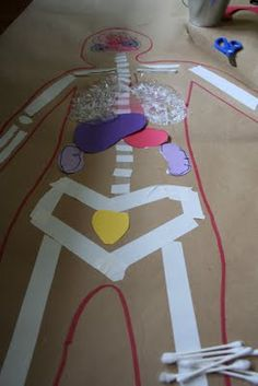 Body Map for Human Anatomy