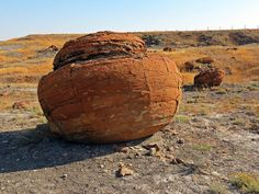 Hiking remote Red Rock Coulee Natural Area SW of Medicine Hat, Alberta, Canada #hiking