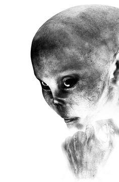 Female Alien Portrait by Bob Orsillo Scary Art, Creepy, Alien Abduction, Macabre, Aliens, Monsters, Body Art, Fine Art Prints, Sci Fi