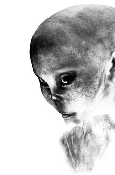 Female Alien Portrait Digital Art  - Female Alien Portrait Fine Art Print