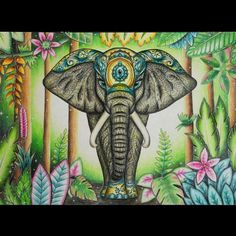 1539 Best Magical Jungle Images In 2019 Coloring Books Coloring