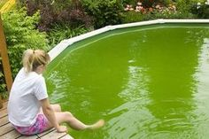 above ground pool maintenance Pool Cleaning Tips, Cleaning Hacks, Deep Cleaning, Hacks Diy, Cleaning Above Ground Pool, Green Pool Water, Cloudy Pool Water, Piscine Diy, Swimming Pool Maintenance