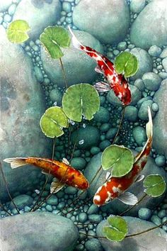 Embroidery En Miami Beach without Embroidery Near Me much Embroidery Guild Near . Embroidery En Miami Beach without Embroidery Near Me much Embroidery Guild Near Me Koi Painting, Acrylic Painting Canvas, Koi Art, Fish Art, Watercolor Fish, Watercolor Paintings, Fish Paintings, Fish Drawings, Art Drawings