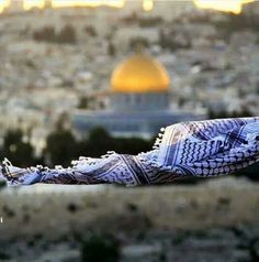 القدس المسجد اﻷقصى¤♡✌ Palestine Quotes, Palestine History, Palestine Art, Jihad Fisabilillah, Rainy Wallpaper, Beautiful Places, Beautiful Pictures, Dome Of The Rock, Arab World