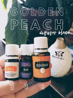Valor is Balance in Doterra Essential Oils 101, Essential Oil Diffuser Blends, Young Living Essential Oils, Valor Essential Oil Uses, Cedarwood Essential Oil Uses, Orange Essential Oil, Valor Young Living, Young Living Orange, Aromatherapy Oils
