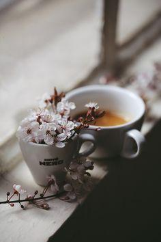 Coffee, every season