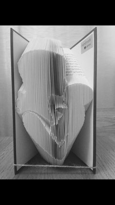 Mother baby book fold