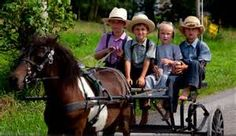 Amish children travel to school in their horse and buggy.