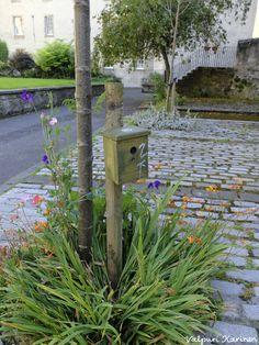 Pörriäispönttö kukkien keskellä Edinburghissa. Photo Valpuri Karinen Viherpiha.fi