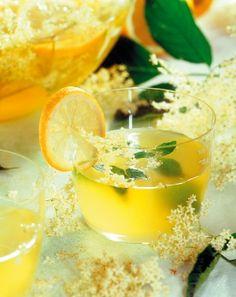 Osviežujúca baza | Kulinárske tipy a recepty | domacnost.sme.sk