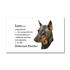 The Doberman Pinscher is among the most popular breed of dogs in the world. Known for its intelligence and loyalty, the Pinscher is both a police- favorite Kinds Of Dogs, All Dogs, I Love Dogs, Best Dogs, Doberman Pinscher, New Puppy, Puppy Love, Miniature Schnauzer Black, Doberman Love