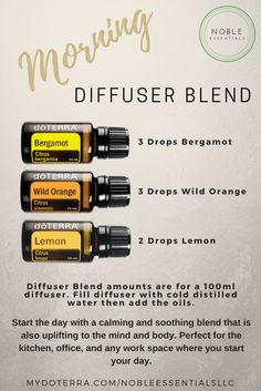 Morning Diffuser Blend from Noble Essentials LLC