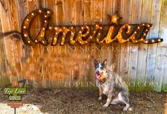 Marquee Letters, Marquee Lights, Cheap Lighting, Traditional Lamps, Poster Display, Logo Sign, Stage Set, Business Signs, Chalkboard Signs