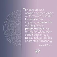 Una frase sobre cómo alcanzar el éxito, atribuida a Ismael Cala Frases, Calla Lilies, Wellness