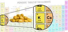 Top 20 High-Potassium Foods