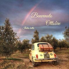 Fiat Cinquecento, Fiat Abarth, Fiat 500 Vintage, Vintage Cars, Fiat 500 S, Nissan Figaro, Mini Morris, Fiat Cars, Romance