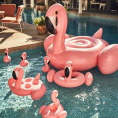 Bou es flamant rose et cygne sunnylife inflatables for Plateau piscine flottant