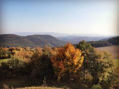 Herbst im Burgenland Vineyard, Mountains, World, Nature, Travel, Outdoor, Autumn, Outdoors, Naturaleza