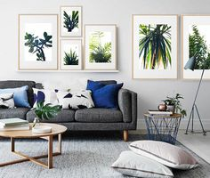 Your crib is nowhere near complete without one of these trendy house plants. How about sprucing up your home by adding fresher shades of green?