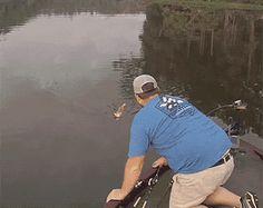 Animated Gifs - Catfishing [video]