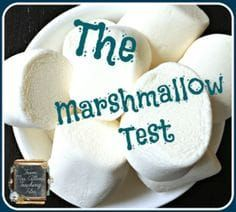 Helping Students with Self Control This fun classroom experiment becomes a powerful lesson self control! Teach your kids about the benefits of learning self control with marshmallows! Marshmallow Test, Counseling Activities, Church Activities, Therapy Activities, Therapy Ideas, Anti Bullying Activities, Bullying Lessons, Church Games, Kindness Activities