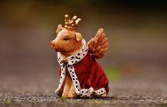 Free Image on Pixabay - Lucky Pig, Guardian Angel, Figure Jupiter In Aquarius, Aquarius Planet, Venus In Aries, Everybody Up, Princess Sofia Of Sweden, Princess Eugenie, Princess Anne, Happy Pig, Cancer Moon