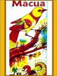 Oh gran nido del Pájaro Macuá, admirado en todo el mundo por tus grandes maravillas, por tu sagrado poder, por dar hogar a aq...