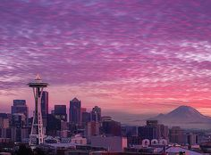 Merry Christmas - Kerry Park, Queen Anne, Seattle   Flickr - Photo Sharing!