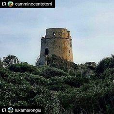 Photo lukamarongiu Use #sardiniain hashtag for your photos.