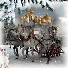 Silent and holy Night for all and Merry Christmas-gif Merry Christmas Gif, Christmas Tree With Gifts, Christmas Scenes, Merry Christmas And Happy New Year, Winter Christmas, Christmas Time, Winter Snow, Christmas Cards, New Year Pictures