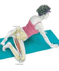 las 23 mejores imágenes de mandukasana  ejercicios yoga