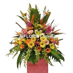 Colourful Mixed Arrangement of Gerberas, Tropical Orchids, Lilies & Bird Of Paradise to wish success