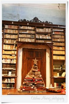 Biblioteca Forteguerriana Pistoia - Italy  Dic - 2011