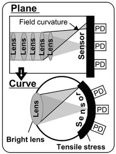 Sony is Working on a Camera Sensor That's Curved Like the Human Eye - http://digitalphototimes.com/sonynews/sony-is-working-on-a-camera-sensor-thats-curved-like-the-human-eye-2/