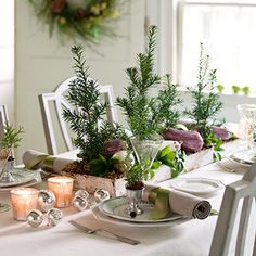 Nature-scape -- Create a mini forest for your Christmas table by placing foot-high yews with root balls inside a shallow metal tray and surrounding them with moss. Keep the trees anchored -- and add color -- with purple and white eggplants.