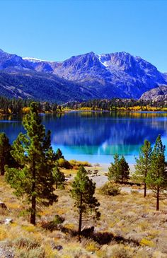 June Lake, Inyo National Forest,California