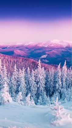 Purple Winter Mountain Landscape iPhone 6 Wallpaper
