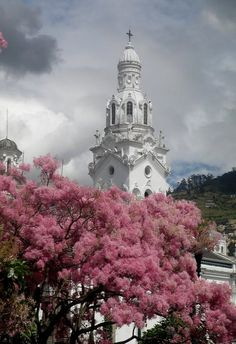 Cathedral of Quito, Ecuador